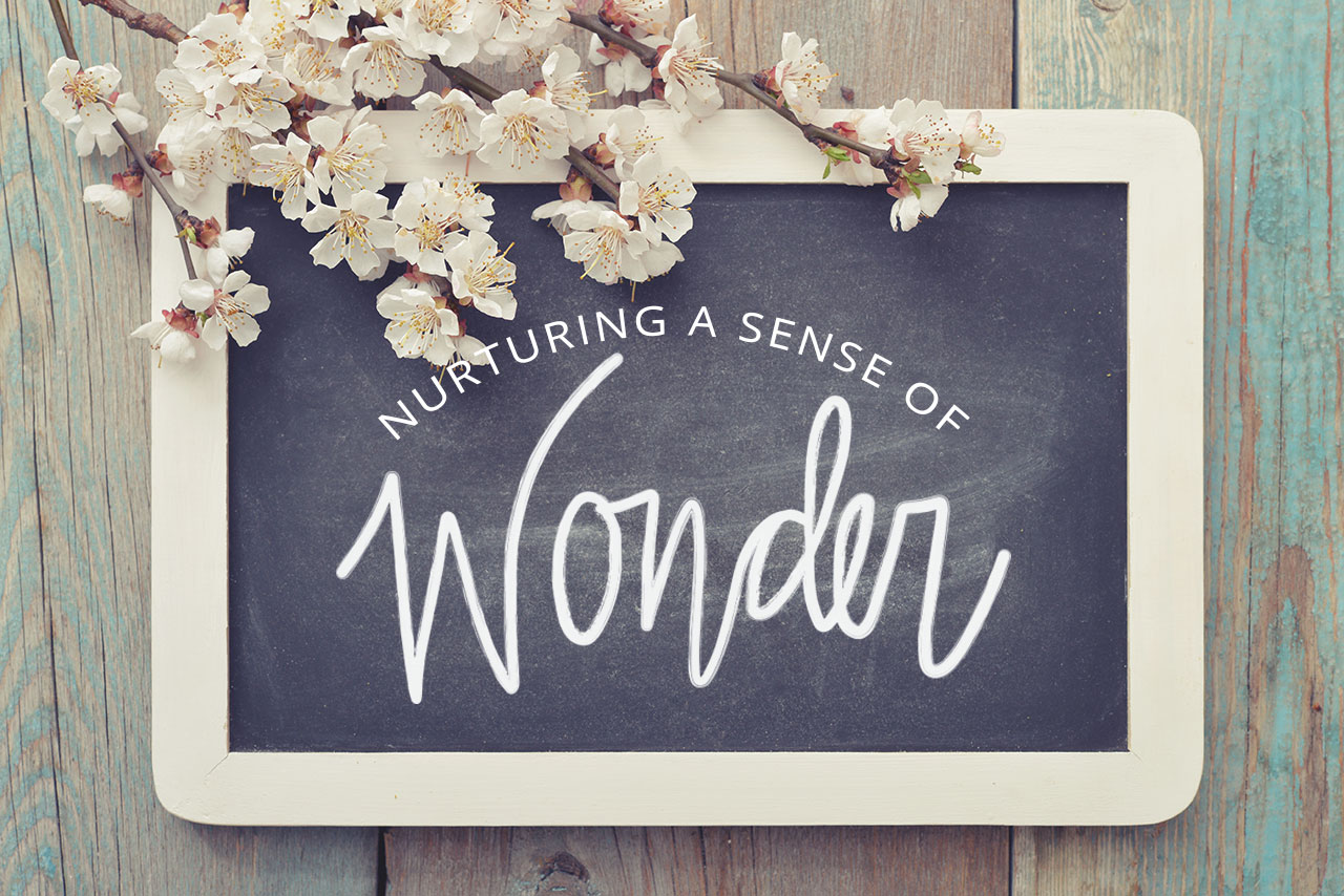 Nurturing a Sense of Wonder
