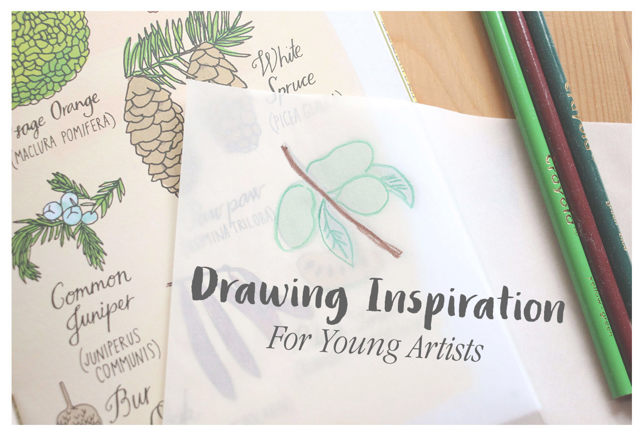 Drawing Inspiration for Young Artists