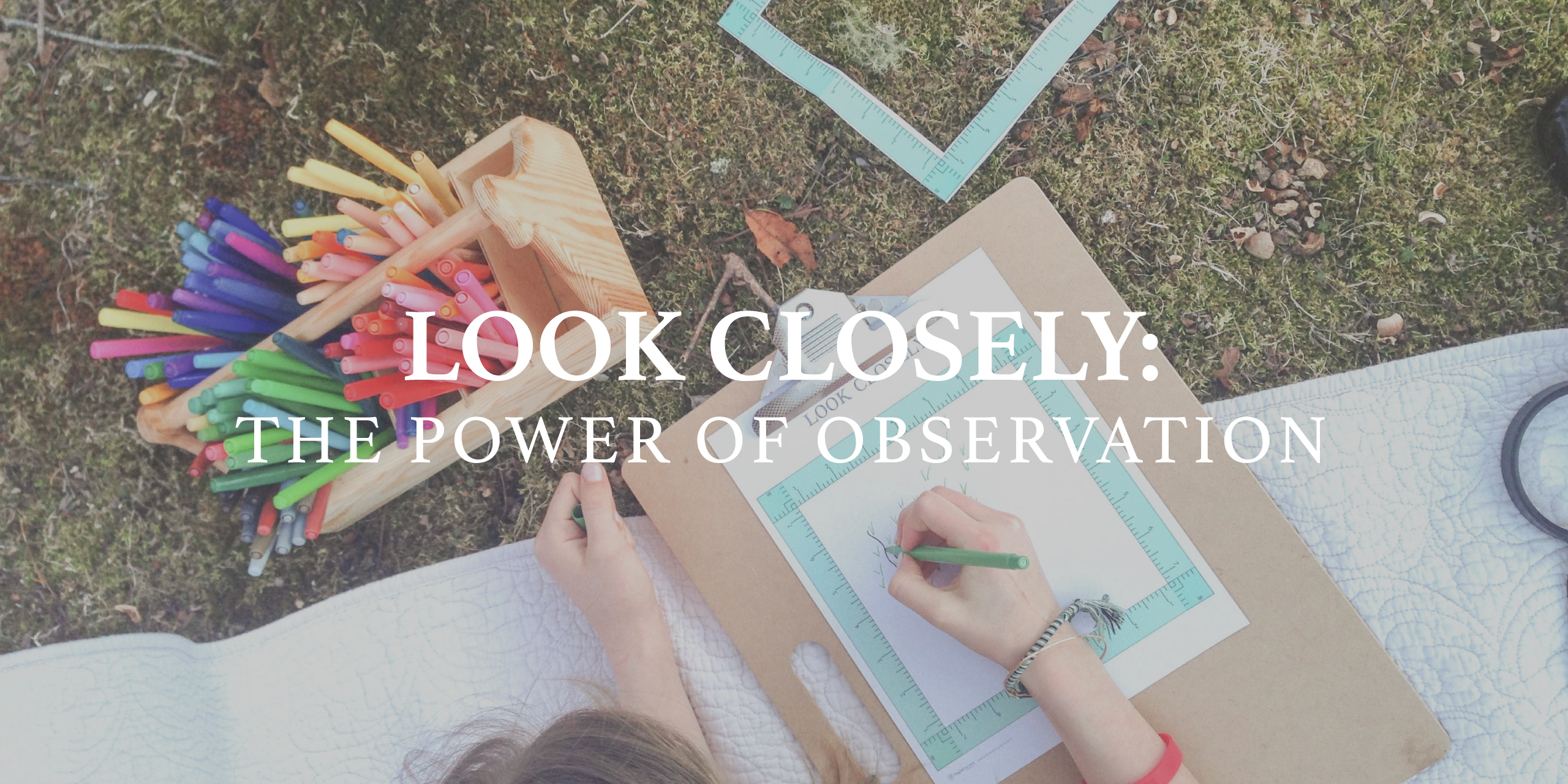 Look Closely: The Art of Observation
