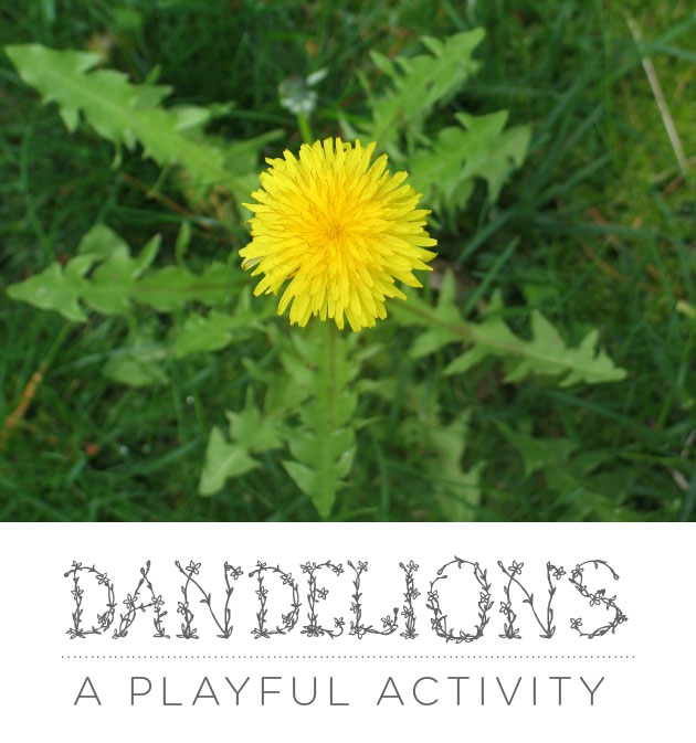 Dandelions: A Playful Activity For Bringing Them to Life